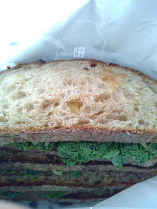 Kale, chedder, caramelized onion sandwich