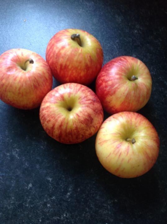 Bag of 5 apples