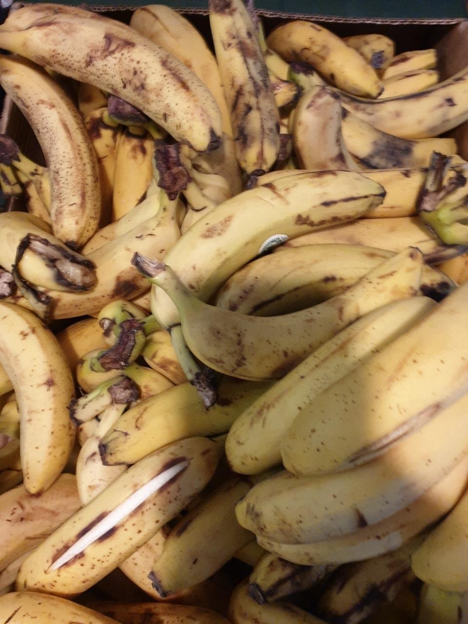 Bananas 🍌🍌🍌