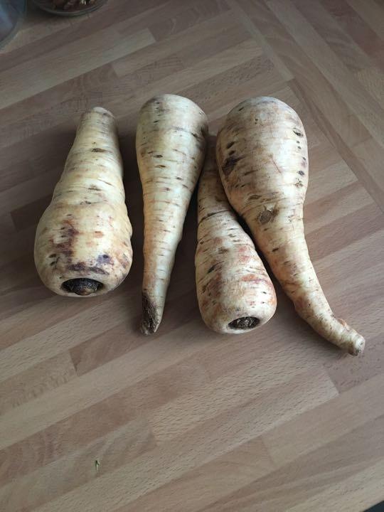 Organic parsnips