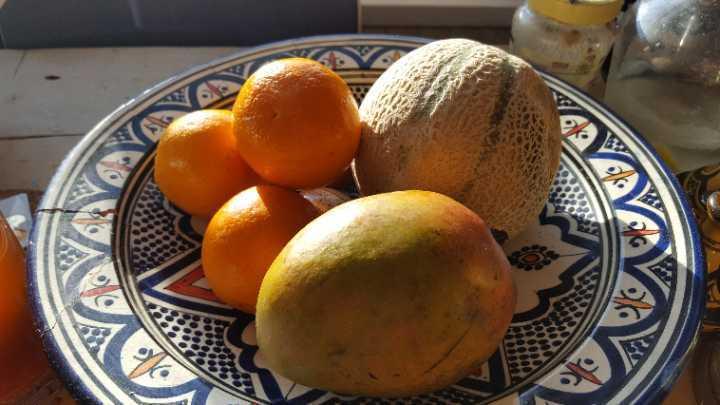 Really ripe oranges, mango and chanterais melon