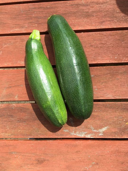 2 courgettes