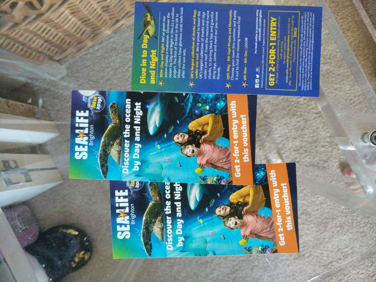 3 X 2-4-1 sealife center