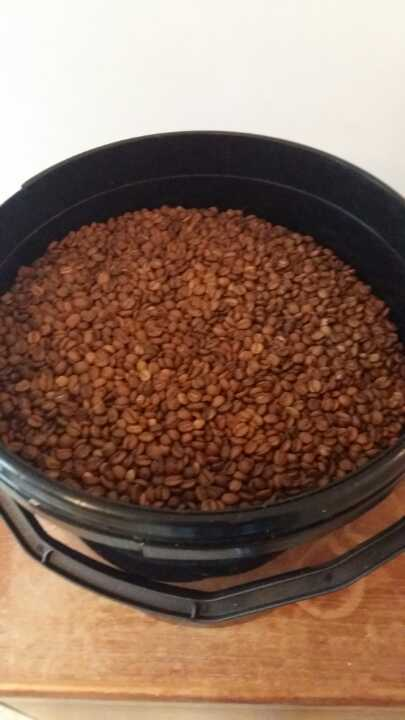 Roasted coffee beans (filter coffee)