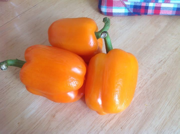 3 orange loose peppers