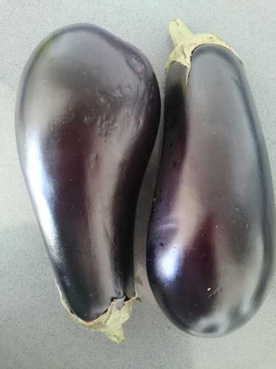 Yummy aubergines