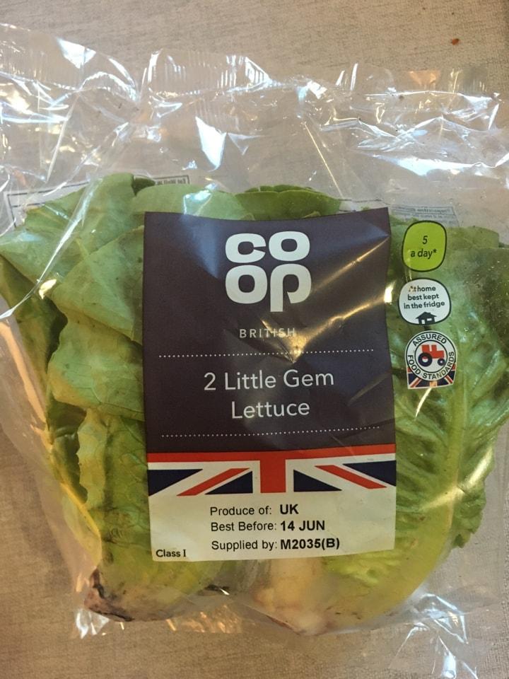 2 Gem lettuce 🥬